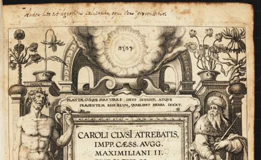 http://lhldigital.lindahall.org/cdm/ref/collection/emblematic/id/110